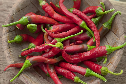 Jimmy Nardello Sweet Chile Pepper 10 Seeds Non GMO Beautiful Green to Red
