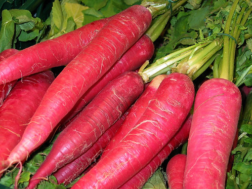 Atomic Red Carrot Seeds NON Gmo All Natural Seeds