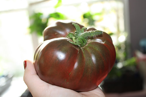 Cherokee Purple Heirloom Tomato Seeds OP Natural