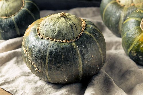 Burgess Buttercup Squash Seeds Bush Type Heirloom Good for Small Gardens