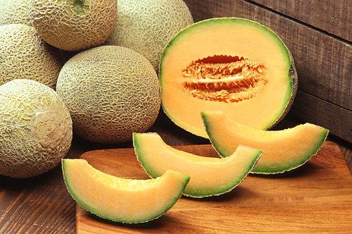 Hales Best Cantaloupe Vegetable Melon Seeds