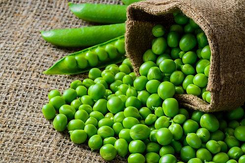 Early Alaska Heirloom Pea 50 Seeds