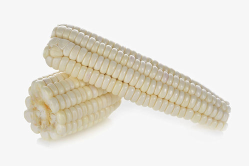 Silver King White Corn 20 Seeds