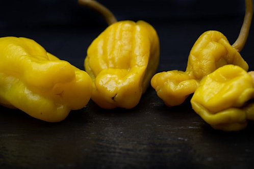 10 seeds Golden Greek Pepperoncini Pepper -Sweet with a kick Flavor