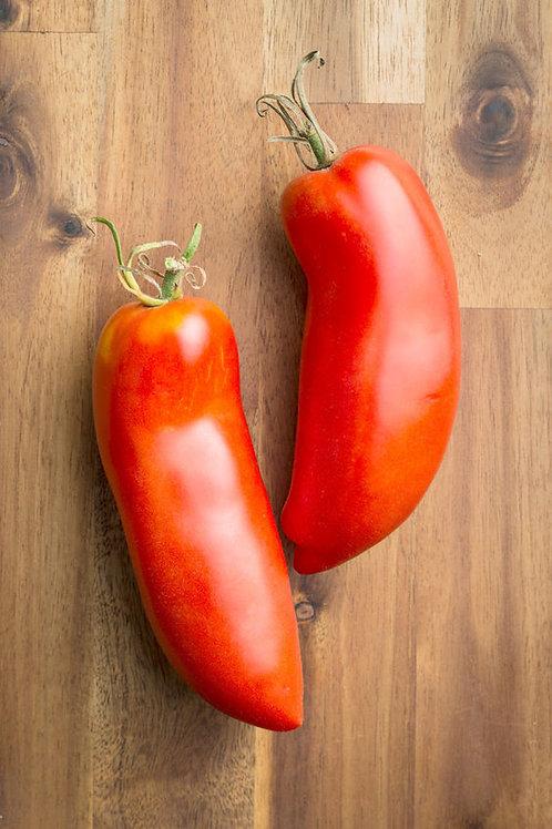 Federle Paste Tomato Seeds