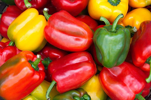 Serendipity's Mini Bell Sweet Pepper Color Mix 10 Seeds -Beautiful Fruits