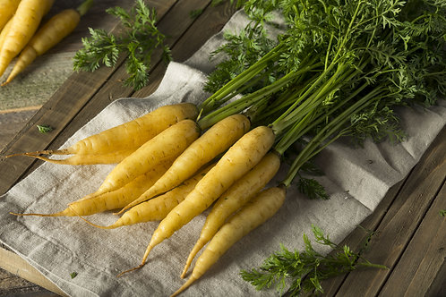 Solar Yellow Carrot Seeds NON Gmo