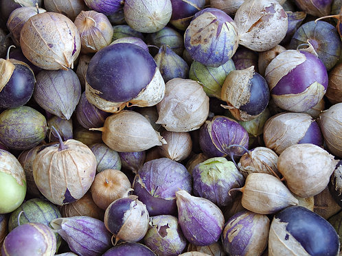 Purple Tomatillo Seeds + Recipe 10 Seed Garden Pack