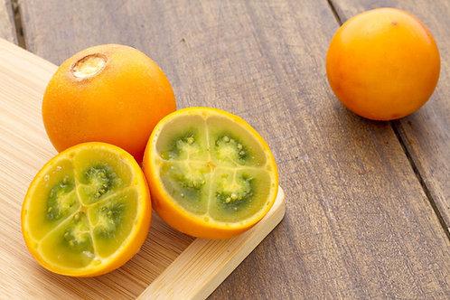 Solanum quitoense Apricot Tomato Seed