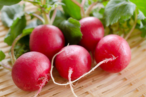 Champion Radish Heirloom Seeds