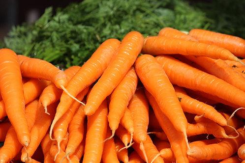 Tendersweet Carrot NON Gmo  Seeds
