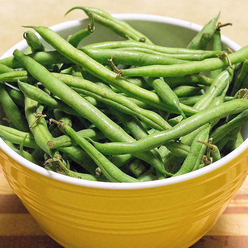Slenderette Bush Bean- 50 seeds - 5-6 inch pods No Staking! High Yields