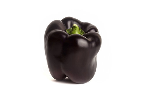 Chocolate Beauty Sweet Pepper 10 Vegetable Seeds