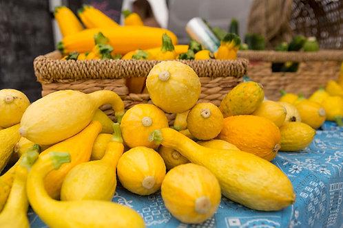Golden Crookneck Squash Seeds -Early Producer Market Or Home