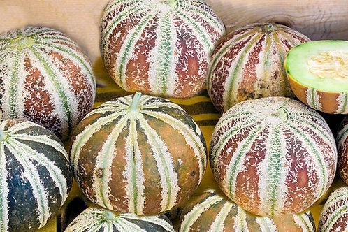 Kajari Melon 5 Rare Seeds Heirloom NON GMO