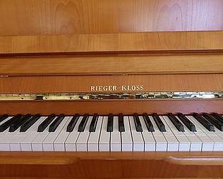 Rieger Kloss 3.jpg
