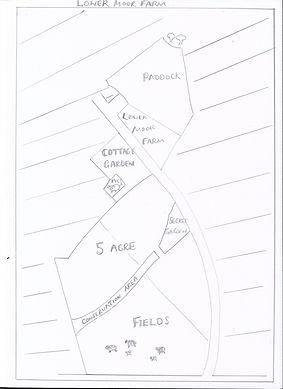 lowe moor farm land drawing.jpeg