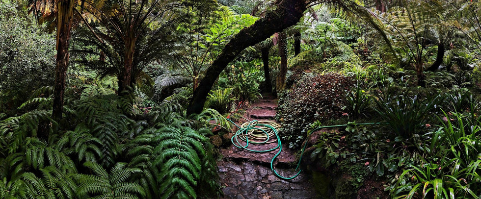 2017 Sintra Parque de Monserrate XI pano