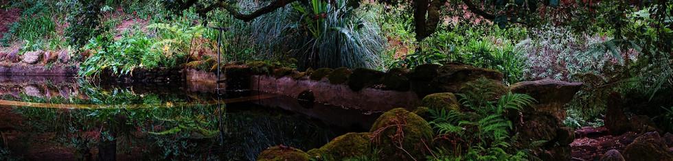 2017 Sintra Parque de Monserrate XII pan