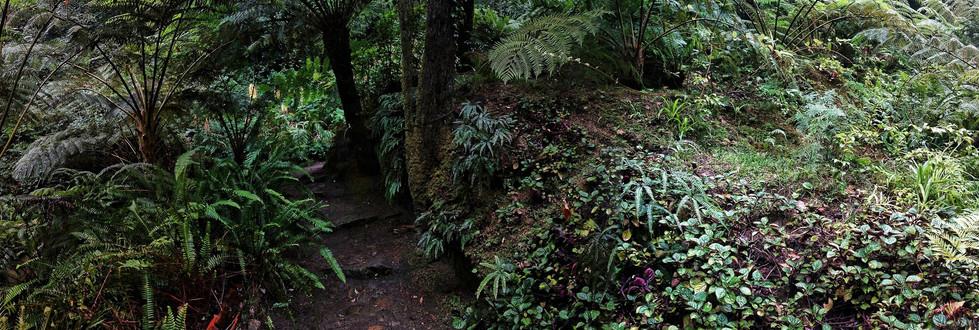 2017 Sintra Parque de Monserrate I pano