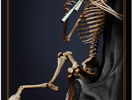 A Reverence For Bones