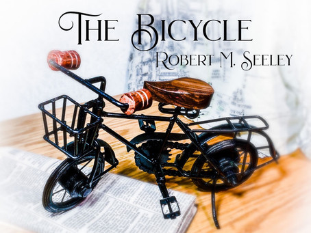 The Bicycle by Robert Seeley