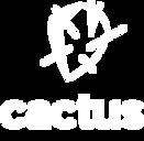 cactus_bianco.png