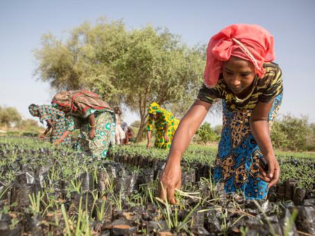 Climate change e condizione femminile: solo colmando il gender gap salveremo il pianeta