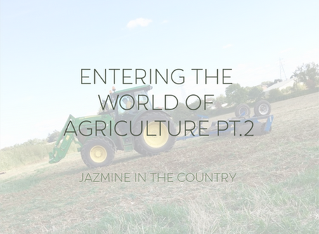Entering The World of Agriculture Pt. 2
