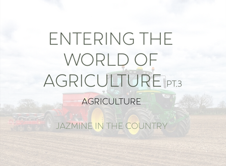 Entering The World of Agriculture Pt. 3 | Agriculture