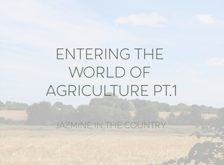 Entering The World of Agriculture Pt. 1