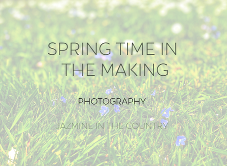 Spring Time in The Making✨💐 | Photography
