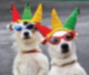 Dog Parade Deland
