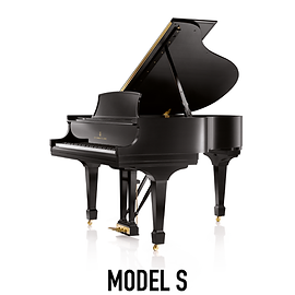 Brand Page Model S-01.png