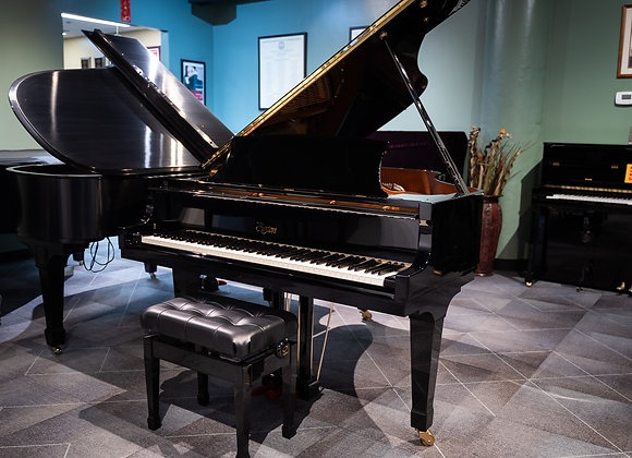 Festival Piano GP-178 PE II