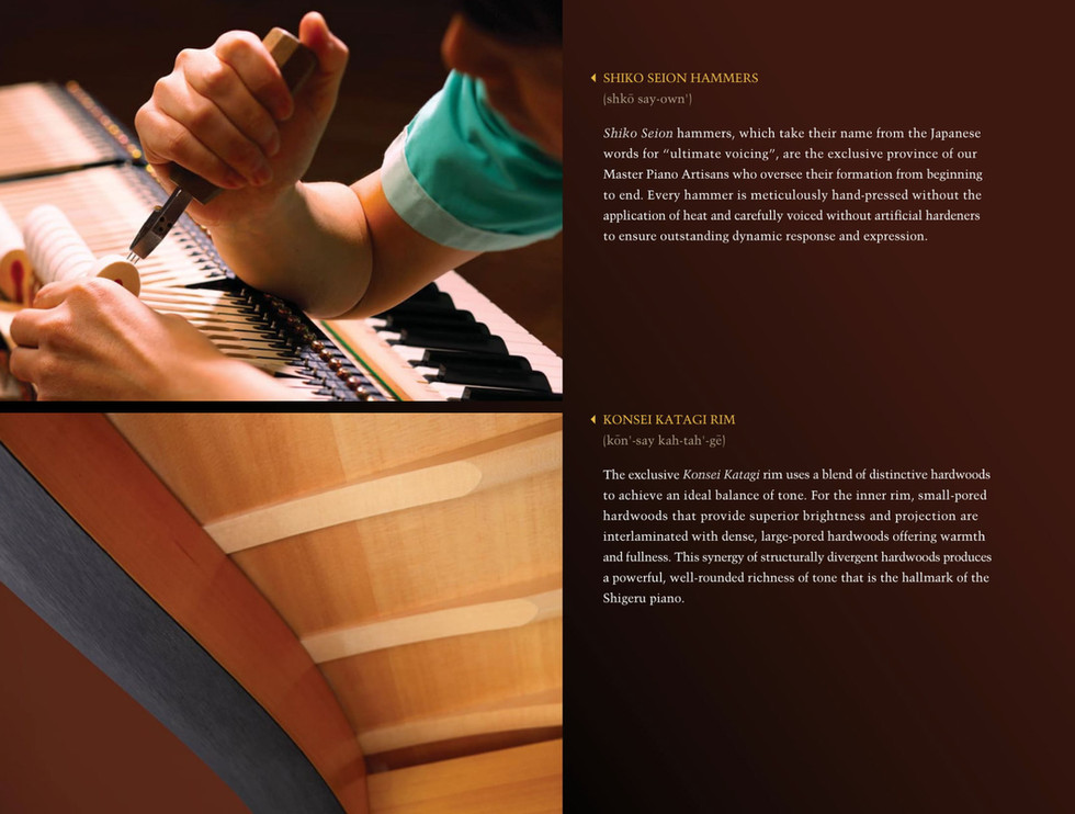 EX-Concert-Grand-Brochure-14.jpg