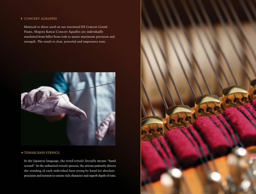 EX-Concert-Grand-Brochure-17.jpg