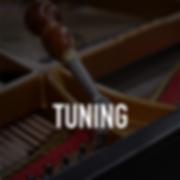 Piano Tuning-01.png