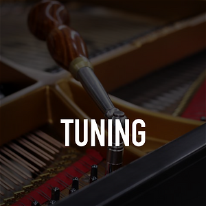 Piano Tuning-01.png