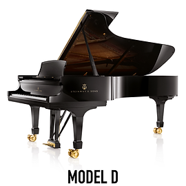 Brand Page Model D-01.png