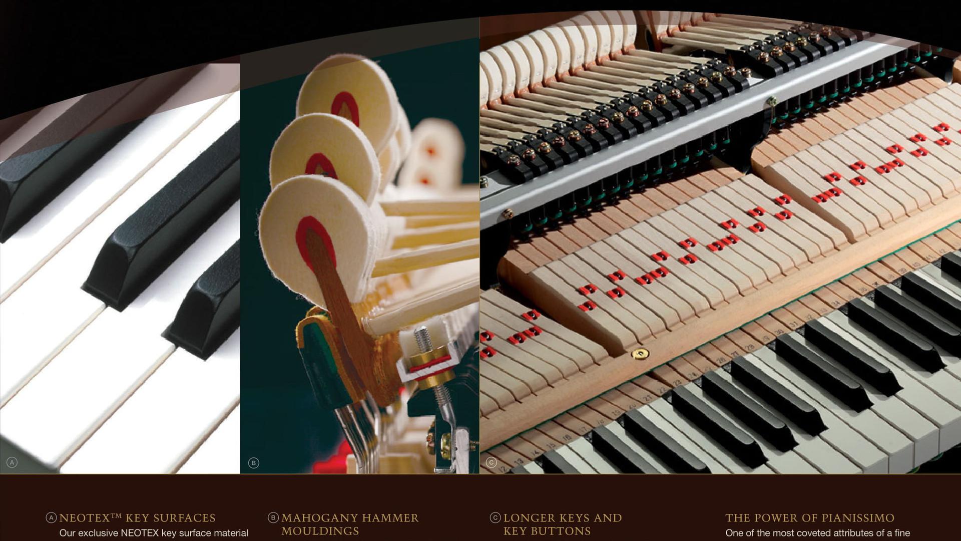 Kawai-Brochure-5.jpg