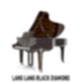 Steinway Lang Lang Black Diamond2-01.png