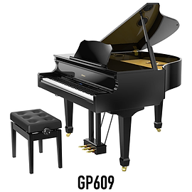Brand Page Model GP609-01.png