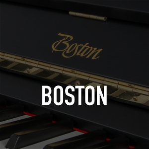 Boston-Home-Page-Image-01.png