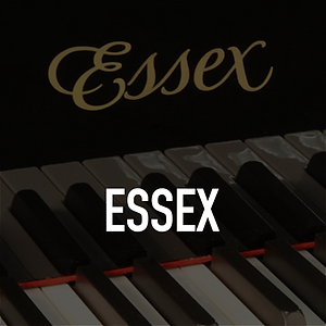 Essex-Home-Page-Image-01.png