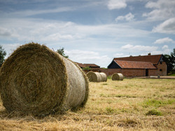 Trustans Farm