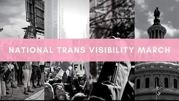 TransVisibilityMarch.jpg