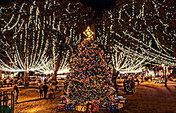 christmas-tree-nights-of-lights.jpg