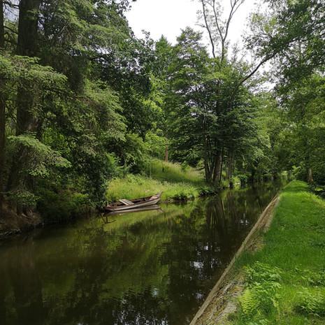 arboretum3.jpg