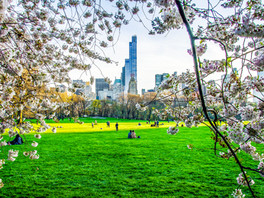 A Beautiful Spring Day In New York City